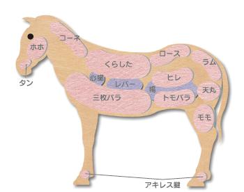 馬肉の部位と馬肉料理